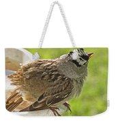White Crowned Sparrow Sends A Warning Weekender Tote Bag
