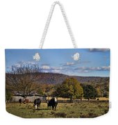 White Faced Cattle In Autumn Weekender Tote Bag