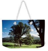 White Horse At Powerscourt, Co Wicklow Weekender Tote Bag