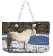 White Horse In Winter Maine Weekender Tote Bag