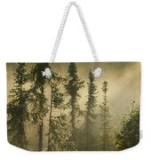 White Spruce In Mist At Sunrise Weekender Tote Bag