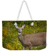 White Tail Early Autumn Weekender Tote Bag