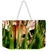 White Tailed Deer Fawn Hiding In Grass Weekender Tote Bag