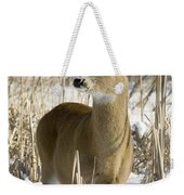 White-tailed Deer In A Snow-covered Weekender Tote Bag