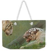 White Tiger Growling At Her Mate Weekender Tote Bag