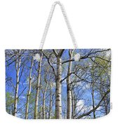 White Trees Against A Blue Sky Weekender Tote Bag