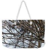 White Wagtail Weekender Tote Bag