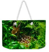 Whitetail Fawn And Ferns Weekender Tote Bag