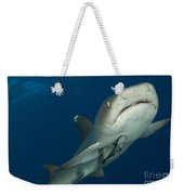 Whitetip Reef Shark, Kimbe Bay, Papua Weekender Tote Bag