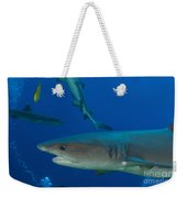 Whitetip Reef Shark, Papua New Guinea Weekender Tote Bag by Steve Jones
