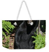 Whose Coming To Visit? Weekender Tote Bag