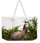 Wild Horse In The Wilderness Weekender Tote Bag
