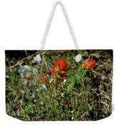 Wild Paint Brush Weekender Tote Bag