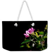Wild Rose Along Galls Creek Weekender Tote Bag