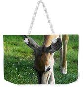 Wildlife Beauty Weekender Tote Bag