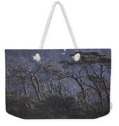 Wind-sculpted Southern Beech Forest Weekender Tote Bag