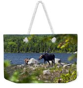Window To The Moose Weekender Tote Bag