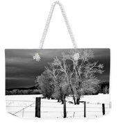 Winter Cottonwoods Weekender Tote Bag
