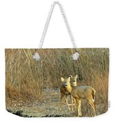 Winter Does Weekender Tote Bag