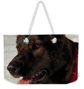 Winter Dog Weekender Tote Bag by Karol Livote