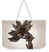 Winter Dormant Rose Of Sharon - S Weekender Tote Bag