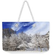 Winter Forest Covered With Snow Weekender Tote Bag by Elena Elisseeva