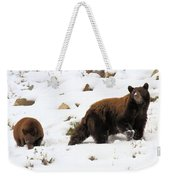 Winter Guide Weekender Tote Bag