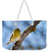 Winter Morning Song Bird Weekender Tote Bag