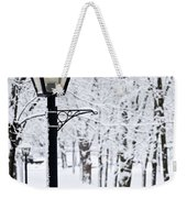 Winter Park Weekender Tote Bag by Elena Elisseeva