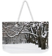 Winter Park With Snow Covered Trees Weekender Tote Bag by Elena Elisseeva