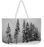Winter Trees On Mount Washington - Bw Weekender Tote Bag