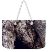 Wolf And The Eagle Weekender Tote Bag