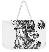 Woman Playing The Lute Weekender Tote Bag by Granger