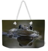 Wood Frog  Rana Sylvatica Weekender Tote Bag