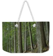 Woodland Forest Path Weekender Tote Bag