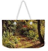 Woodland Path, Mount Stewart, Ards Weekender Tote Bag