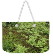 Woodland View In A Pine Forest Weekender Tote Bag