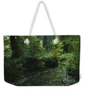 Woodland View With Stream Weekender Tote Bag
