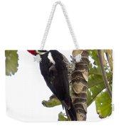 Woodpecker 1 Weekender Tote Bag