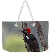 Woodpecker 4 Weekender Tote Bag