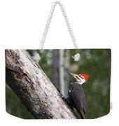 Woodpecker Sizes Me Up Weekender Tote Bag