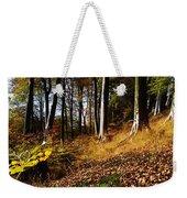 Woods During Autumn Weekender Tote Bag