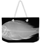 X-ray Of A Flame Hawkfish Weekender Tote Bag