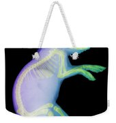 X-ray Of A Rabbit Weekender Tote Bag