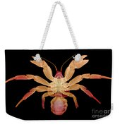 X-ray Of Coconut Crab Weekender Tote Bag