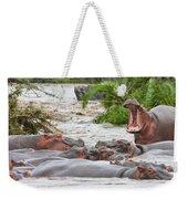 Yawning Hippo Hippopotamus Amphibius Weekender Tote Bag