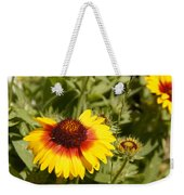 Yellow And Red In The Sunshine Weekender Tote Bag