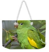Yellow-chevroned Parakeet Brotogeris Weekender Tote Bag
