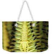 Yellow Commensal Shrimp On Crinoid Weekender Tote Bag