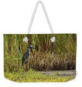 Yellow-crowned Night-heron Weekender Tote Bag
